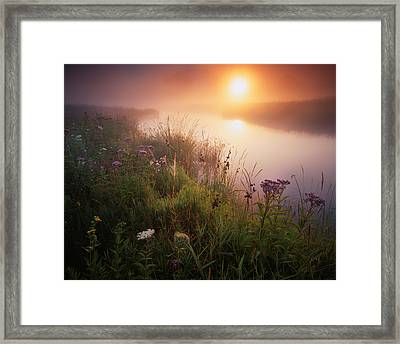 Flowers In The Fog Framed Print by Ray Mathis