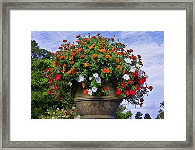 Flowers In The Park Framed Print by Diana Powell