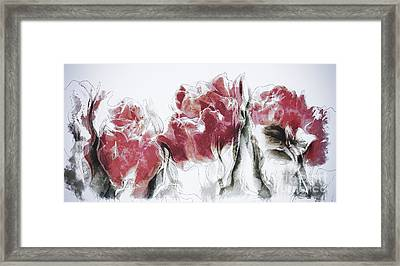 French Country Roses Framed Print by Shanina Conway