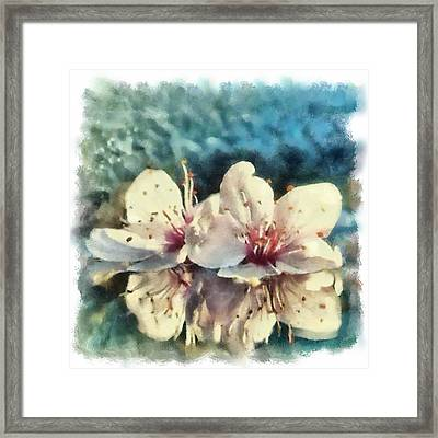 Flowers In Water Framed Print by Desmond De Jager