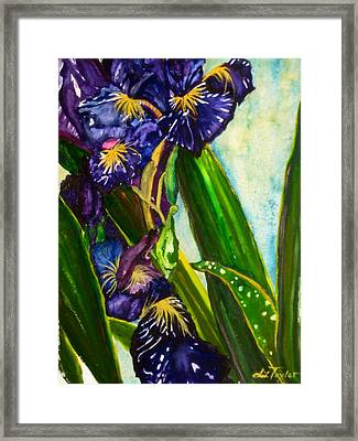 Flowers In Your Hair II Framed Print