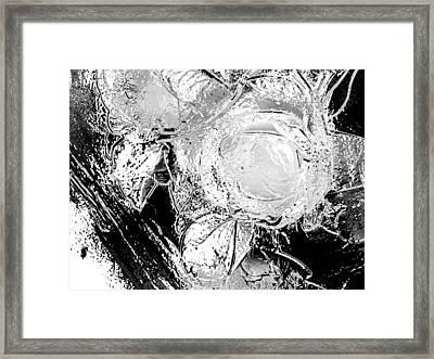 Flowers Framed Print by Jason Michael Roust