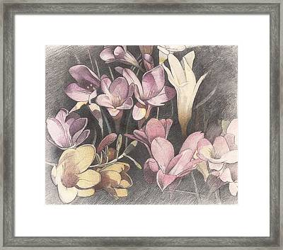 Flowers Framed Print by Mark  Leavitt
