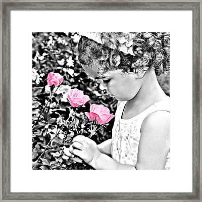 Flowers Of Age Framed Print by Hans Castleberg
