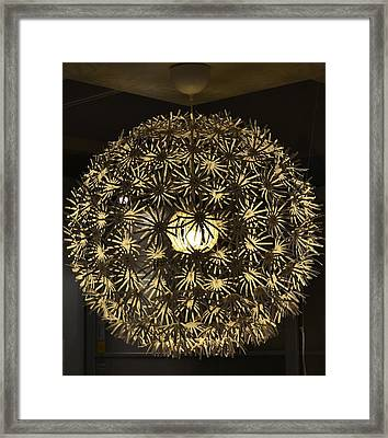 Framed Print featuring the photograph Flowers Of Light by Mary Zeman
