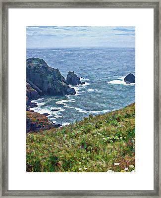 Flowers On Isle Of Guernsey Cliffs Framed Print