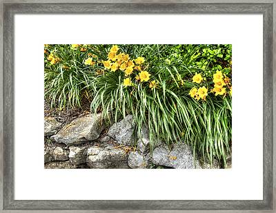 Flowers On The Edge Framed Print by Honour Hall