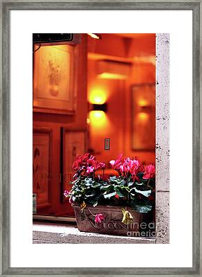 Flowers On The Ledge Framed Print by John Rizzuto