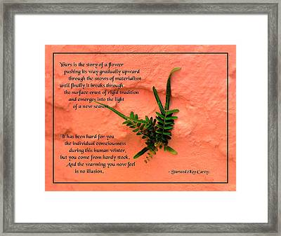 Flowers On The Wall Framed Print by Mike Flynn