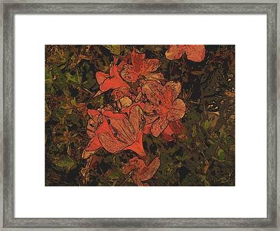 Flowers Framed Print by Tanya Moody