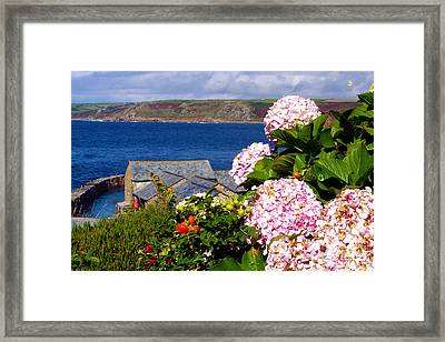 Flowers With A Sea View Framed Print by Terri Waters