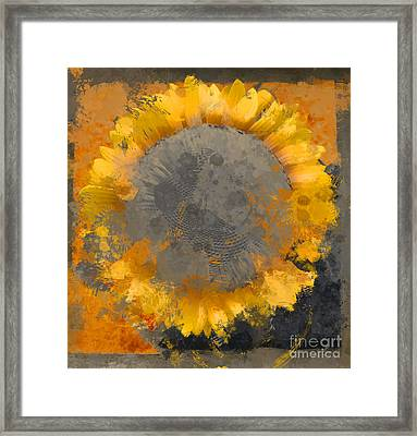Flowersun - 09279gmn22b3ba13a Framed Print by Variance Collections