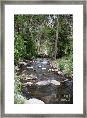 Flowing Down Stream Framed Print