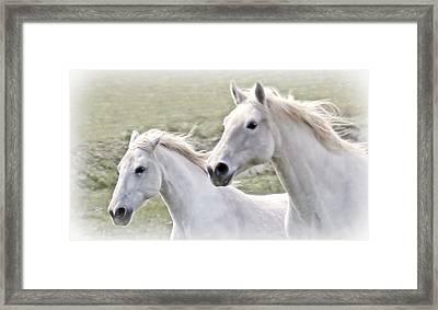 Flowing In The Breeze Framed Print