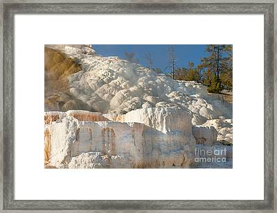 Flowing Minerals Framed Print