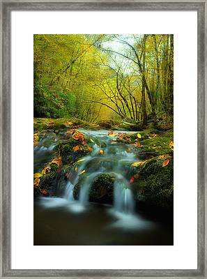 Flowing October Framed Print by Michael Eingle