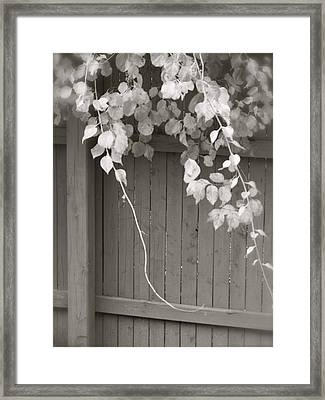 Flowing Over Framed Print