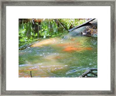 Flowing Ripples Framed Print by Warren Thompson