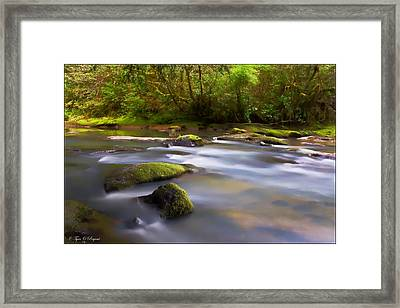 Flowing Serenity Framed Print