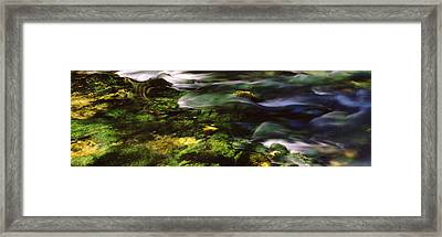 Flowing Stream, Blue Spring, Ozark Framed Print by Panoramic Images