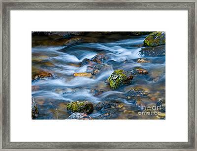 Flowing Stream Framed Print