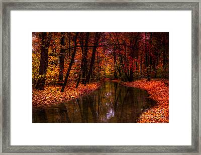 Flowing Through The Colors Of Fall Framed Print