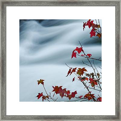 Flowing Water And Changing Leaves Framed Print by Silvio Ligutti