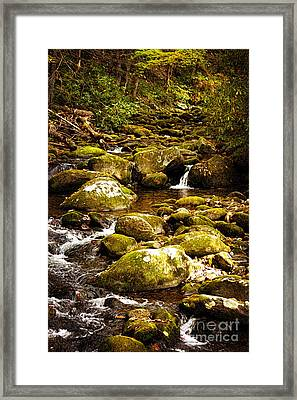 Flowing Water Framed Print by Lena Auxier