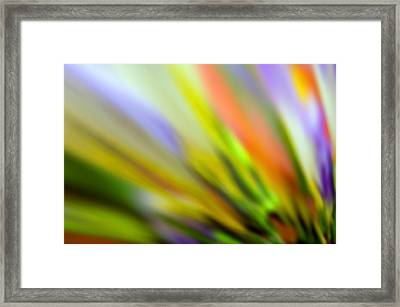 Flowing With Life 16 Framed Print by Angelina Vick