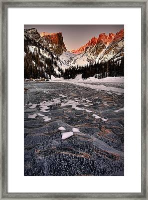 Flozen Dreams Framed Print