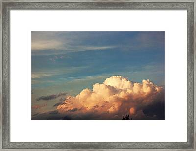 Fluffy Framed Print by Danielle Keltner