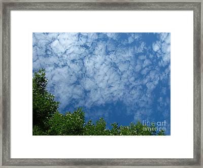 Fluffy Summer Clouds 1 Framed Print