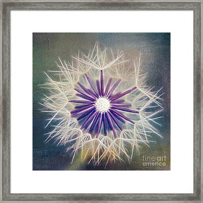 Fluffy Sun - 9bt2a Framed Print by Variance Collections