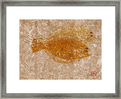 Fluke W Shadow On White Unryu/mulberry Paper Framed Print