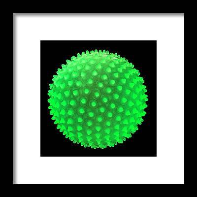 Designs Similar to Fluorescent Spiky Ball