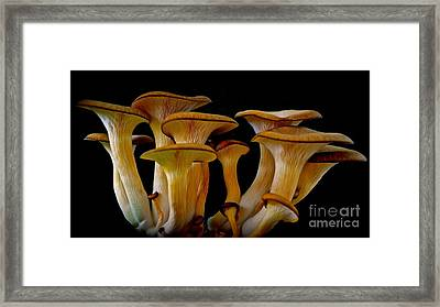 Fluted Clump Framed Print
