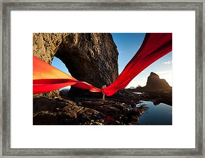Flutterby Framed Print by Dario Infini
