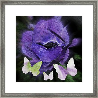 Framed Print featuring the photograph Flutterbys by Amanda Eberly-Kudamik