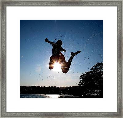 Fly 2 Framed Print