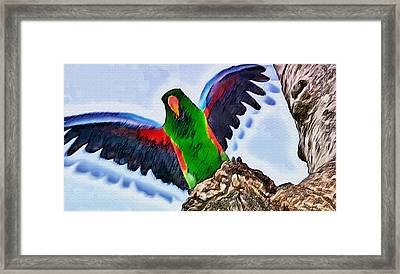 Fly And Shine Framed Print