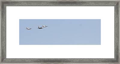 Framed Print featuring the photograph Fly Away by David S Reynolds