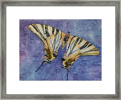 Fly Away Home Framed Print by Casey Rasmussen White