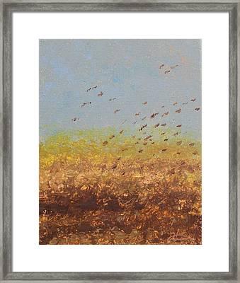 Fly Away Home Framed Print