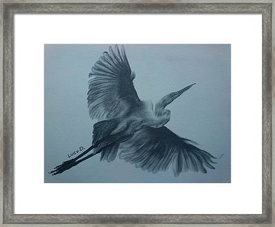 Fly Away Framed Print by Lucy D