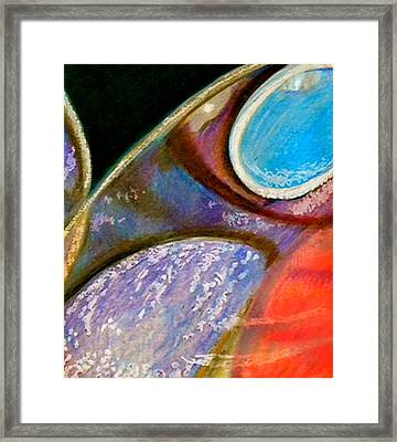 Fly Framed Print by Debi Starr