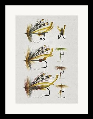 Game Fishing Framed Prints