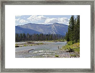 Fly Fishing On The South Fork Of The Flathead River Framed Print by Merle Ann Loman