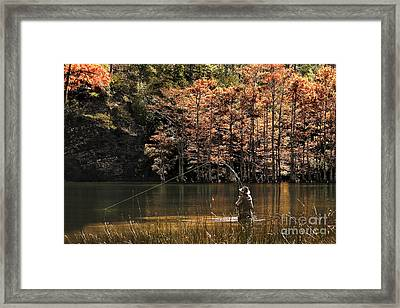 Fly Fishing  Framed Print by Tamyra Ayles