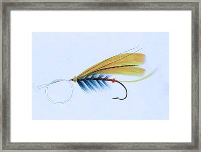 Fly Fishing - The Shannon Fly Framed Print