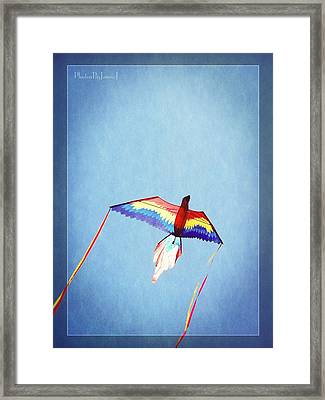 Fly Free Framed Print by Jamie Johnson